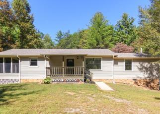 Casa en Remate en Mineral Bluff 30559 EMERALD LN - Identificador: 4509369929