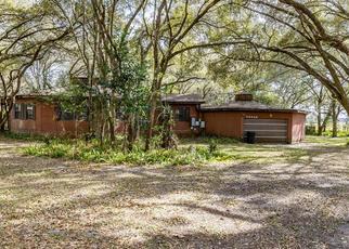 Casa en Remate en Wesley Chapel 33545 KNOLLWOOD LN - Identificador: 4511574235