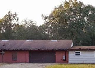 Casa en Remate en Polk City 33868 ROCKRIDGE RD - Identificador: 4513340594