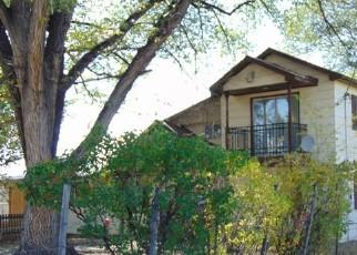 Casa en Remate en Hotchkiss 81419 BACK RIVER RD - Identificador: 4514162222