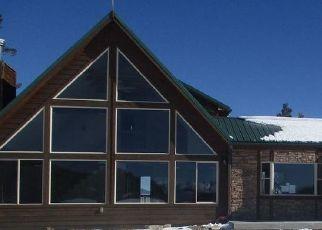Casa en Remate en Hartsel 80449 BLACKSMITH RD - Identificador: 4517085265