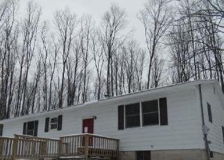 Casa en Remate en Rapid City 49676 SPUR RD - Identificador: 4520205842