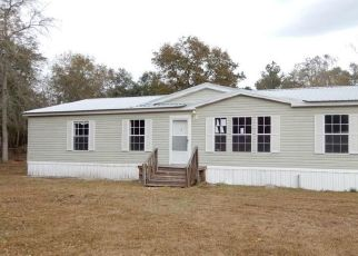Casa en Remate en Hortense 31543 MCINTOSH TRL - Identificador: 4520794470