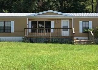 Casa en Remate en Ashford 36312 DIAMOND DR - Identificador: 4523111792