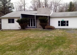 Casa en Remate en Pocono Lake 18347 ALTEMOSE RD - Identificador: 4526126806