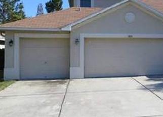 Pre Foreclosure en Land O Lakes 34637 STONELEIGH DR - Identificador: 1013760617