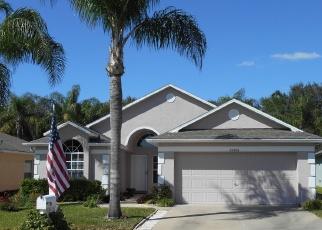 Pre Foreclosure en Land O Lakes 34639 SEVEN RIVERS CIR - Identificador: 1051766239