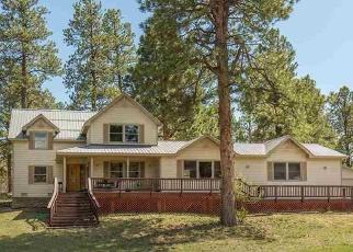 Pre Ejecución Hipotecaria en Durango 81303 SHENANDOAH TER - Identificador: 1066630200