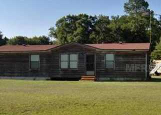 Pre Foreclosure en Lakeland 33809 WOODS TRL - Identificador: 1089666322