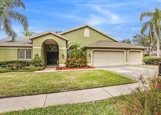 Pre Foreclosure en Palm Harbor 34685 BRAYTON TER S - Identificador: 1101131163