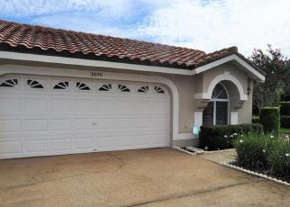 Pre Foreclosure en Palm Harbor 34685 DARSTON ST - Identificador: 1174588161