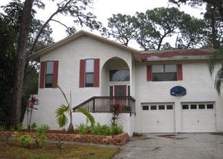 Pre Foreclosure en Palm Harbor 34683 ROBIN TRL - Identificador: 1185405246