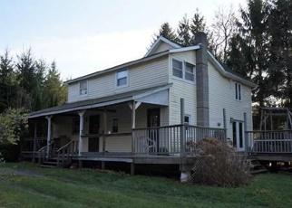 Pre Ejecución Hipotecaria en Neversink 12765 STATE ROUTE 55 - Identificador: 1236178256