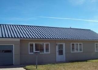 Pre Ejecución Hipotecaria en Leadville 80461 MOUNT SHERMAN DR - Identificador: 1267012507