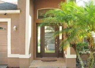 Pre Ejecución Hipotecaria en Tampa 33647 LUCAYA DR - Identificador: 1336813742