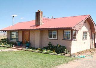 Pre Ejecución Hipotecaria en Westcliffe 81252 COUNTY ROAD 119 - Identificador: 1365096792