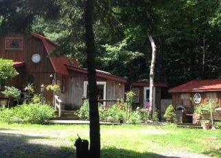 Pre Ejecución Hipotecaria en Prattsville 12468 TERRACE DR - Identificador: 1384853354