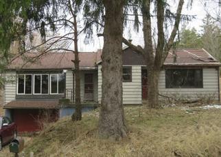 Pre Ejecución Hipotecaria en West Falls 14170 KNAPP RD - Identificador: 1394442348