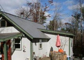 Pre Ejecución Hipotecaria en Williamsburg 01096 BALL RD - Identificador: 1397214735