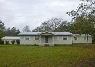 Pre Ejecución Hipotecaria en Keystone Heights 32656 BONDARENKO RD - Identificador: 1516464543