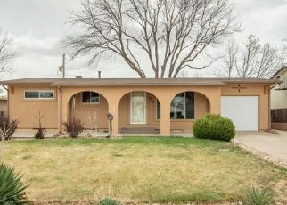 Pre Ejecución Hipotecaria en Pueblo 81005 BROOKFIELD LN - Identificador: 1542929560