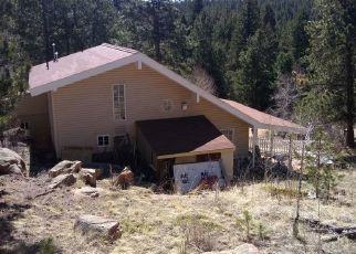 Pre Ejecución Hipotecaria en Conifer 80433 US HIGHWAY 285 - Identificador: 1613227894