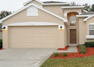 Pre Ejecución Hipotecaria en New Port Richey 34654 PALM BAY CT - Identificador: 1733634378