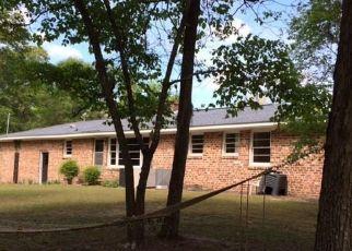 Pre Ejecución Hipotecaria en Johnsonville 29555 WHITE OAK DR - Identificador: 1779936561