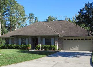 Pre Ejecución Hipotecaria en Jacksonville 32223 BRADY PLACE BLVD - Identificador: 1827028400