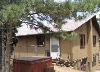 Pre Ejecución Hipotecaria en Woodland Park 80863 GENTIAN RD - Identificador: 962212391