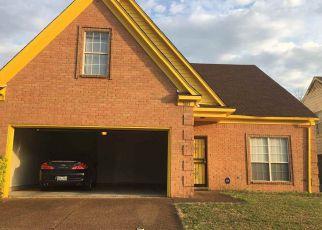 Ventas Cortas en Memphis 38133 WOLF HOLLOW DR - Identificador: 6308247366